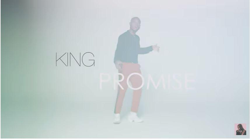 promise cctv