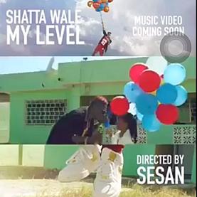 shatta wale my level video