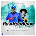 Don Twister - RAWKPORKPOR  ft. Fancy Gadam (Prod by: Stone B)